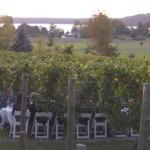 Traversing Three Generations:  Bowers Harbor Vineyards