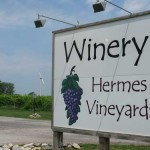 Offbeat European Grapes Growing Across the Midwest