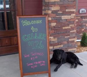 cellar426-dog3