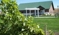 Feather RIver Vineyards in North Platte,  Nebraska
