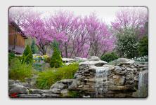 oliver garden