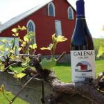 Galena Cellars Unveils Marquette