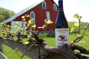 GALENA CELLARS Illinois Marquette.2