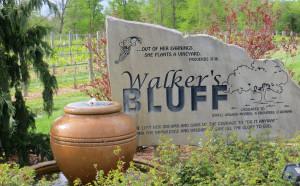 Walker's Bluff Winery