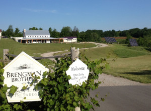 Brengeman Brothers Winey with new AllSun Tracker Solar panels