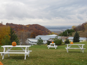 The view from Danzinger Vineyards in Wisconsin with the Mississippi River in the background.