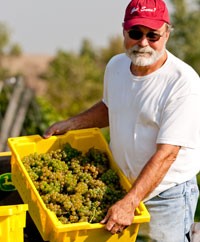 John Larson of Snus Hill Winery in