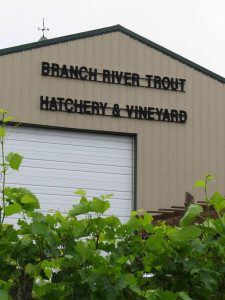 Trout Springs Winery is named after the trout hatchery which is on the same property .