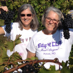 Edg-Clif Farms: Chambourcin Specialists