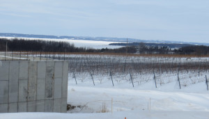 The foundation has been poured at Bonobo Winery.  The view from the tasting room will be one of Michigan's best.