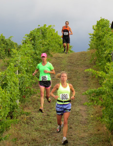 Ciccone Vineyards and Winery is the center of the annual Harvest Stompede Run and Walk.  This years race through the vineyard is on September 6th and 7th.