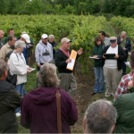 Northern Grapes Project Funding Extended