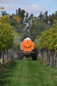 Multiple researchers have pointed out benefits to foliar feeding. Figuring out the ideal spray timing and program for each individual vineyard is as important as identifying what nutrients are needed.