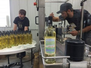 Winemaker Sam Jennings makes final adjustments to the labeler as Logan Ellenbecker puts bottles on the conveyor belt. The first bottle labeled is Crusin' White, which is a blend of Brianna and Edelweiss.