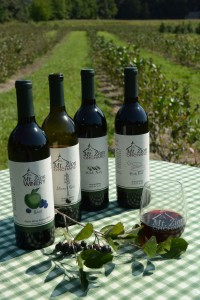 A quartet of aronia wines is produced by Gerry Godfrey at Mount Zion Winery in Marydel, N.D Credit: www.loblolly.biz